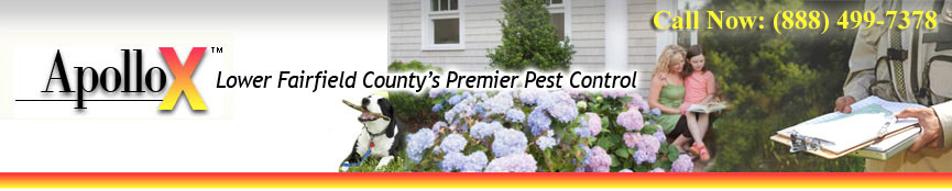 ApolloX Pest Control Services, Westport CT